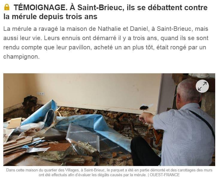 À Saint-Brieuc, ils se débattent contre la mérule depuis trois ans